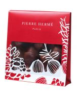 croquants-praline-pierre-herme-paris