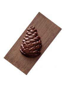 tablette-pomme-de-pin-chocolat-noir-praline